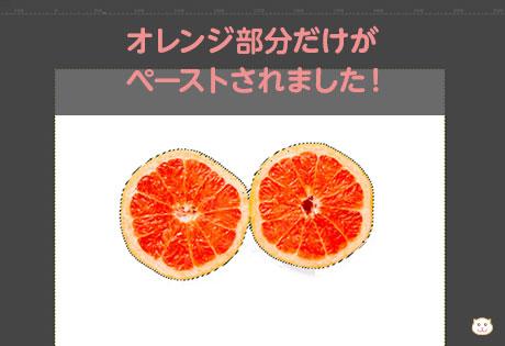 オレンジ部分だけが ペーストされました!